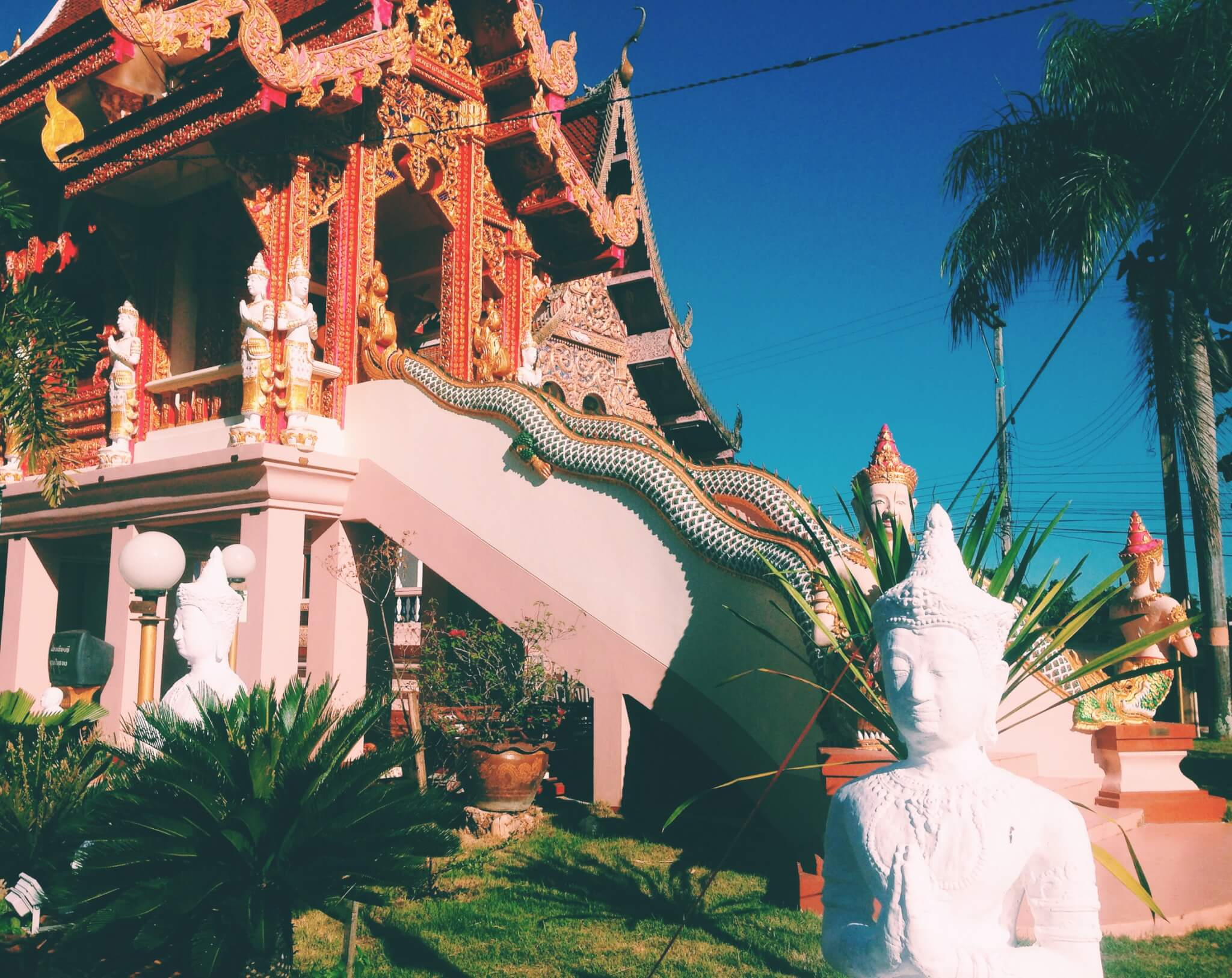 Little orange and white temple in Thailand   Thailand Destinations