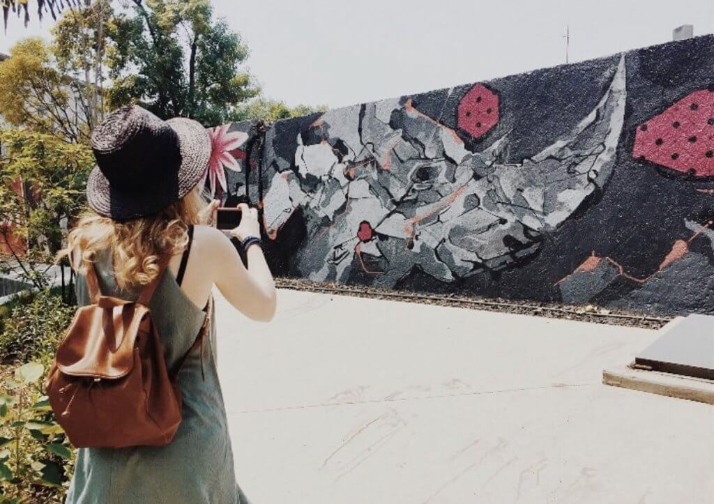 Basic Spanish Phrases | Street art in La Roma, Mexico City
