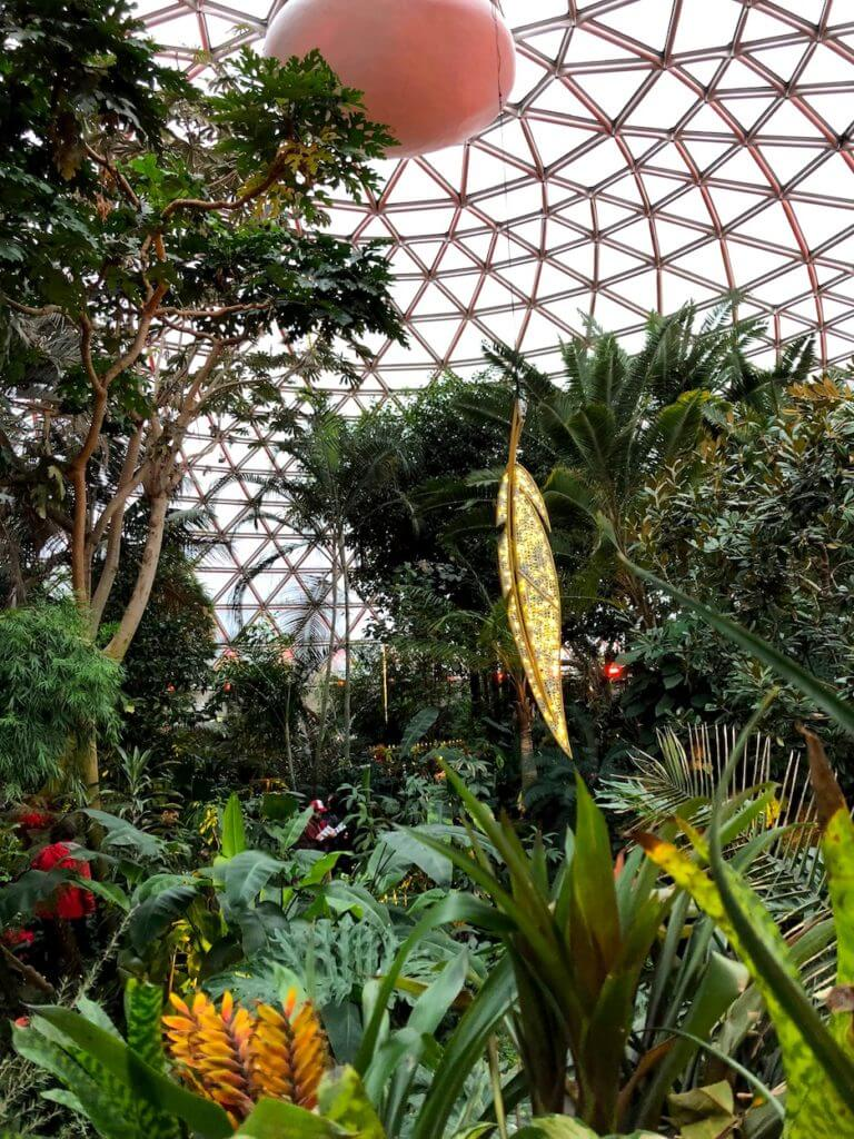 Christmas in Vancouver | Bloedel Conservatory