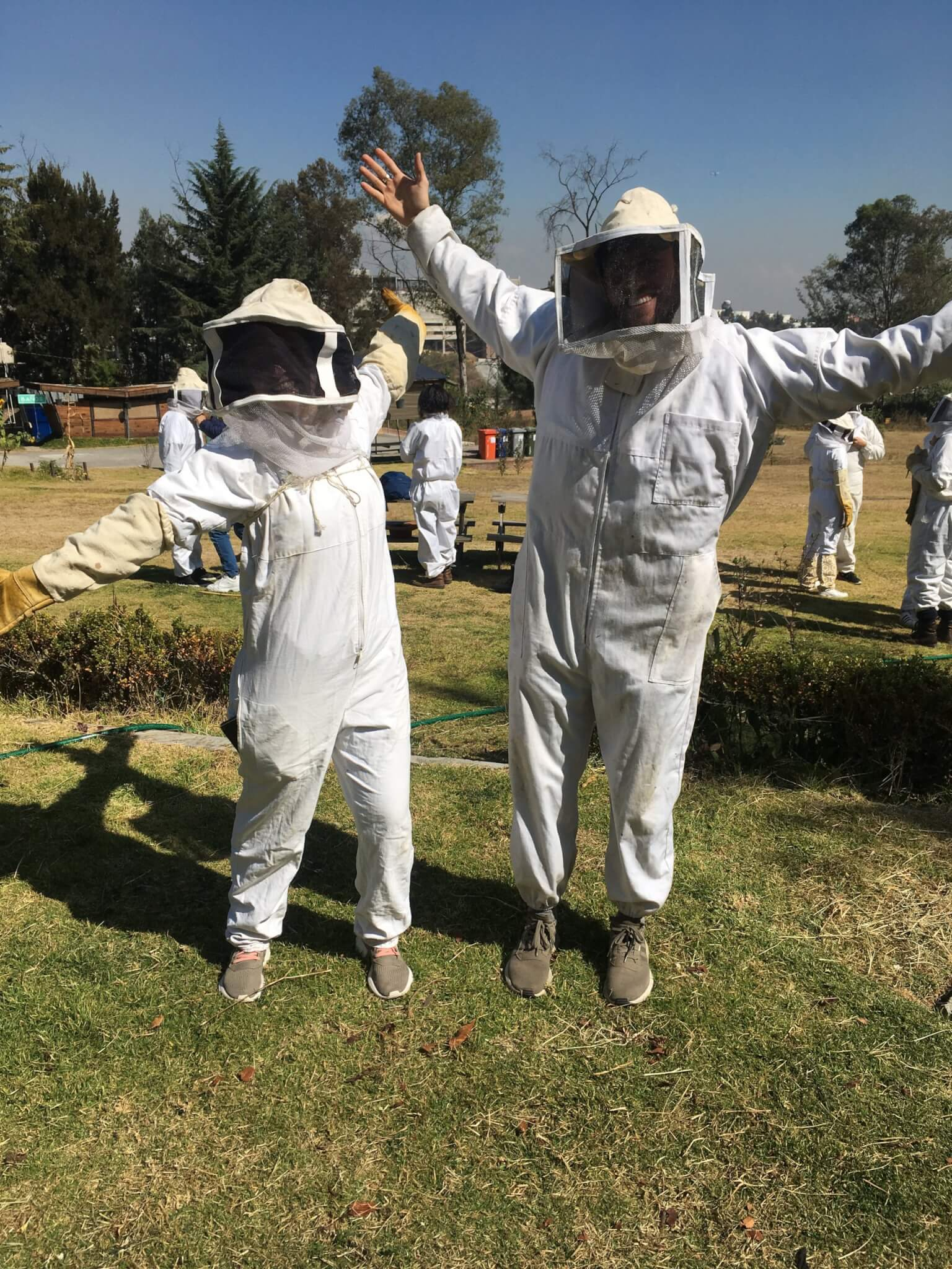 Beekeeping Protective Clothing | Apicultura Mx